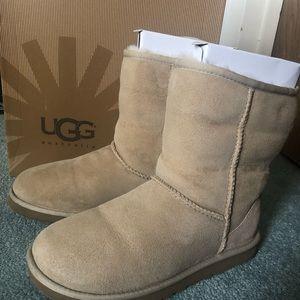 Uggs Classic Short Boot
